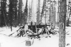Mad Trapper Cabin