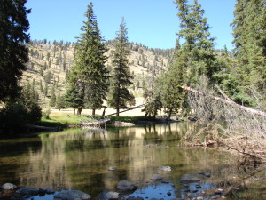 Slough Creek in Yellowstone NP.  Looks like great water but there was a deer carcass just upstream.  In this case I was more afraid of the grizzlies in the area!