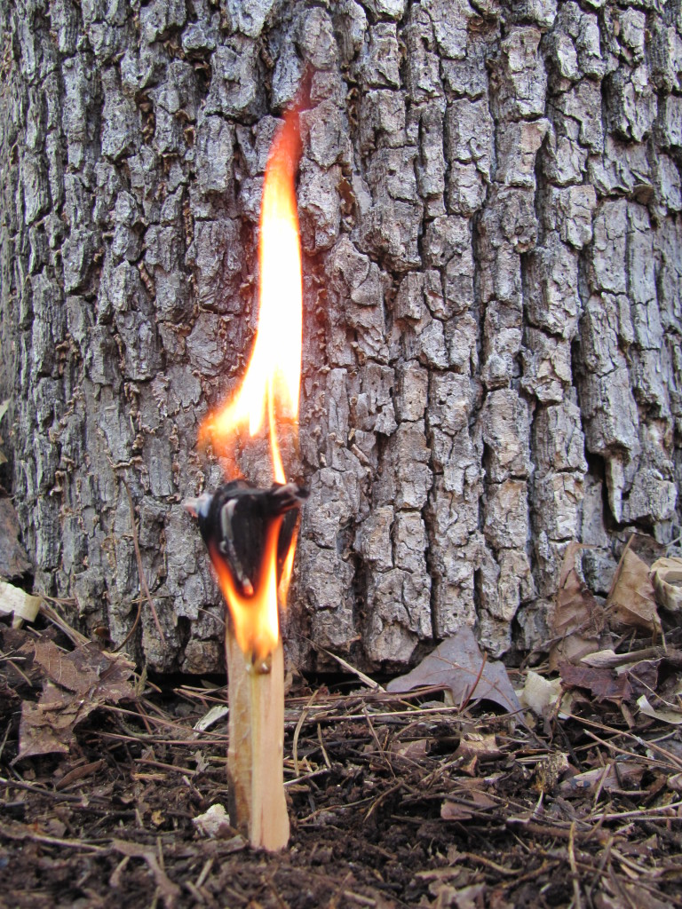 I have never been in the presence of anyone else who has made and used a fatwood candle before.  In my limited # of samples depending on conditions, I get 5 to 10 minutes burn time.