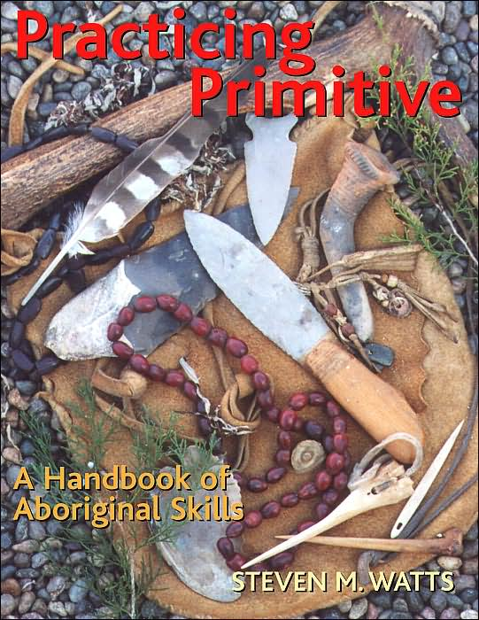 Practicing_Primitive_838