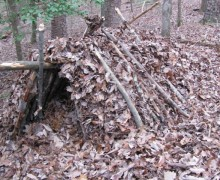 Front view of debris shelter before being stuffed with leaves and door.