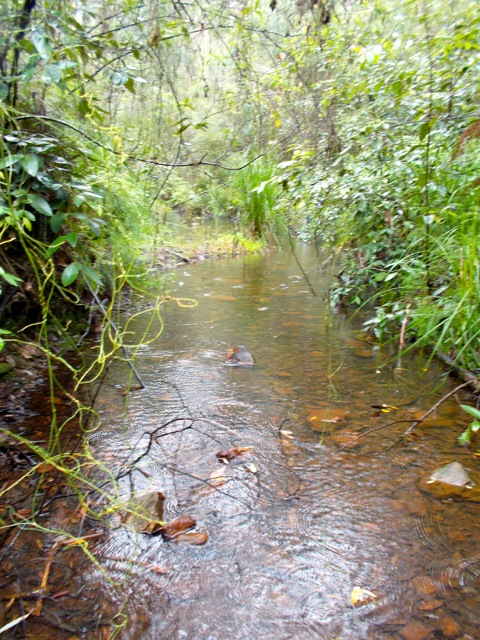 Red Hands Creek