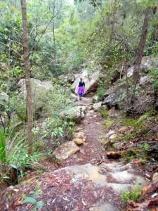 On the bush track (trail).