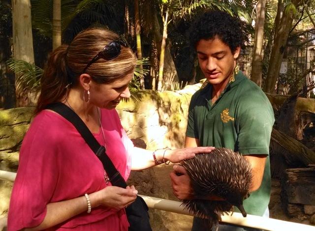 Stacie petting an echinada.
