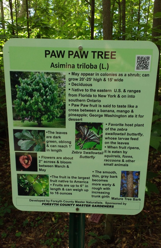 PawPaw MN Sign